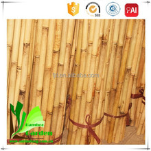 Good Quanlity Bamboo Agriculture Stake/Canes/Pole/Stick