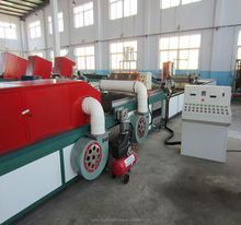 China supplier high quality fruit and vegetable hot temperature treatment mango processing machine