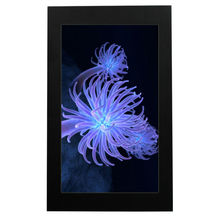 32 inch naked eye 3D advertising display,vertical lcd screen with PC built-in