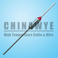 Thermal Usage and High Breaking Capacity thermal fuse 10a 250v