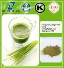 GMP factory organic wheat grass powder