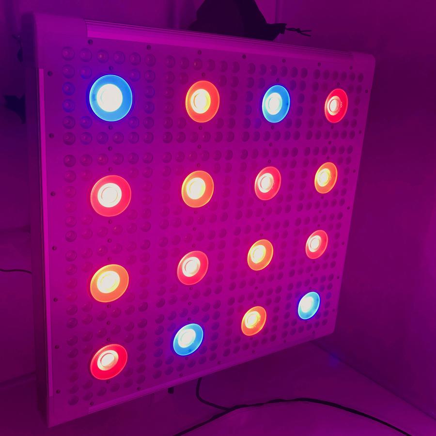 ホット販売アイデアキング900ワット1200ワットled成長ライトパネル用栄養成長フラワーステージ