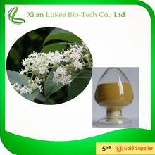 free sample of tripterygium wilfordii with wholesale price