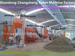 CS 2015 Professional China 2-3t/h complete wood pellet making line fromcrushing to packing with best price