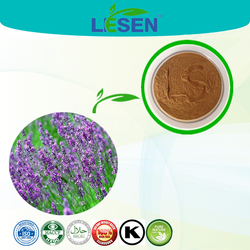 Hot sale high quality Rosmarinic acid extracted from Rosemary