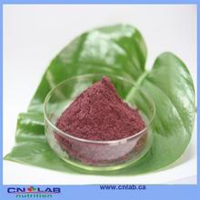 Reasonable supplier from China purple elderberry nutritional ingredient
