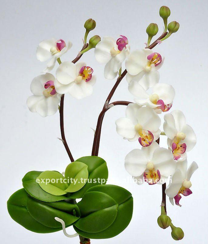 Orchidea phalaenopsis m fiori artificiali thai fatti a for Orchidea fioritura