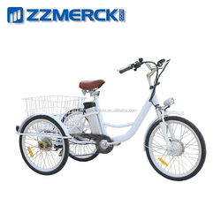 250w Electric Cargo Tricycle for Adults for Sale