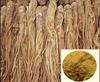 Angelica sinensis extract powder,Dong Quai root extract,Chinese angelica extract powder