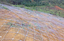 SNS Active Slope Protection netting Mesh