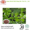 Australian Cowplant Root or Leaf Extract Gymnemic Acids 25%/Gymnema sylvestre (Retz.) Schult Extract Powder