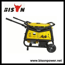 BISON(CHINA) Factory Direct Sale 12V DC Portable Petrol Generator