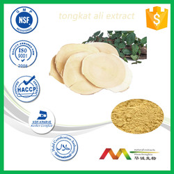 Malaysia Herb Medicine for Penis Erection / Tongkat Ali Extract for Sexual Health /tongkat ali herbs extract