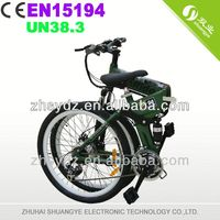 Shuangye 2013 new design 2 seat electric bike