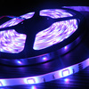 strip led light,ce rohs dc 12v led strip