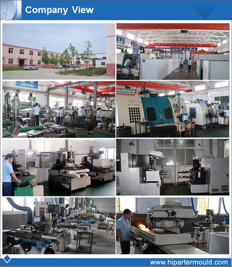 Company View 2.jpg