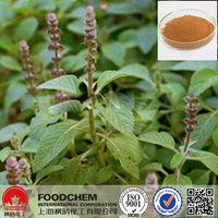 Raw Material Coleus Forskohlii Extract Forskolin
