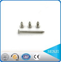 Hardware products stainless steel 304 decorative wood screw