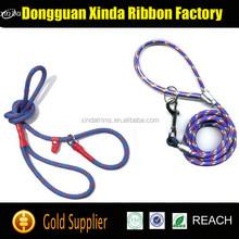 Free Sample Hands Free Dog Leash, Dog Collar Leash, Retractable Dog Leash