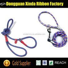 Free Sample Running Retractable Printed Dog Leash, Dog Collar Leash