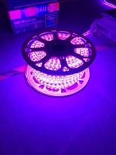 Waterproof flexible led strip lights 220v 5050 60led/metre