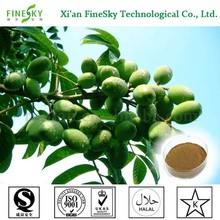 natural de hoja de olivo de extracción de <span class=keywords><strong>polvo</strong></span> de surtidor de china
