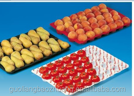 29x49cm/29x39cm/39x59cm Fruit Blue PP Tray
