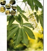 Natural Black Cohosh Extract 2.5%,8%
