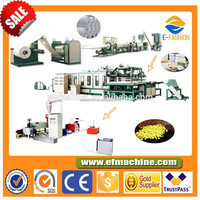 Automatic Double Layer Air Bubble Film Extruder