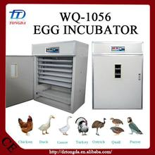 Hot selling cheap egg incubator for sale jordan with low price