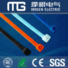 CE RoHS SGS PA66 Self-Locking Plastic Cable Tie