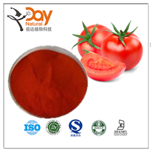 Free Sample Tomato Powder Vegetable Powder