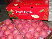 2014 Crop Chinese fresh Fuji apple in best qualtiy