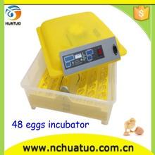 automatic egg incubator for fertile eggs/ fertile duck eggs for sale