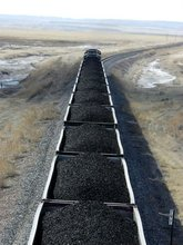 Steam Coal/Thermal Coal