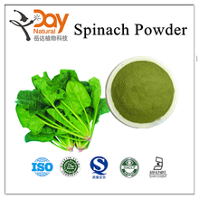 Medical Grade Spinach P.E./Spinach Juice Powder/Spinach Leaf Extract