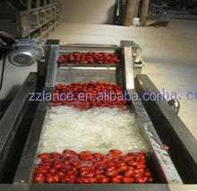 2015 hot sale La-w4000 fruit and vegetable cleaning machine with video