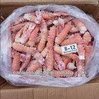Best and Cheapest Size 8/12 Frozen Lobster Tails