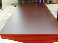China Linyi Chantaplex WBP glue good quality 11 or 13 layers marine ply wood