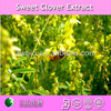 factoty supply pure sweet clover extract melilotus extract