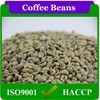 Raw Bulk Green Yunnan Arabica Coffee Beans Unroasted Coffee Beans Sale,Common Cultivation Type Green Coffee Beans
