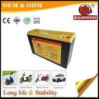 12v 30ah electric bike battery bag/battery three wheel bike