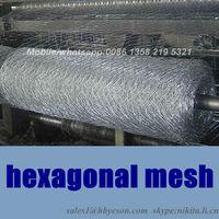 china anping factory hexagonal wire mesh for chicken mesh