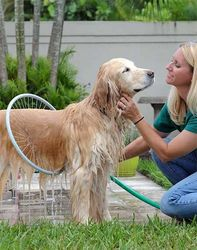 New product dog grooming brush ,dog products pet grooming,cat comforter sets
