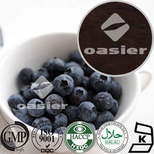 Fruits Containing Natural Fruit flavor powder factory supply origin 1%-25% PAC Blueberry Fruit Extract powder
