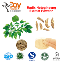 2015 Natural Radix Notoginseng Extract Notoginsenoside Powder