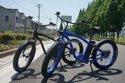 brushless motor e bike city e bike electric bike en15194