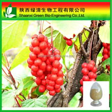 Schisandra Berries P. E Deoxyschizandrin 5%/factory Supply Fructus Schisandra Chinensis Extract Powder Deoxyschizandrin I