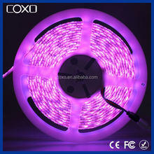 10mm width IP65 5050 waterproof led strip white