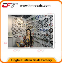 Hebei Oil Seal Manufacture